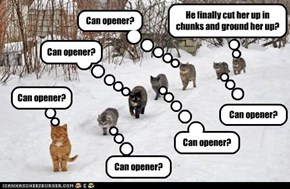 Can opener?