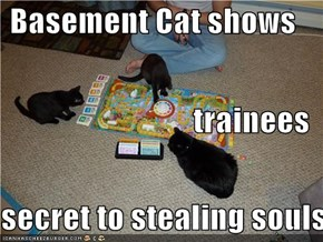 Basement Cat shows trainees secret to stealing souls
