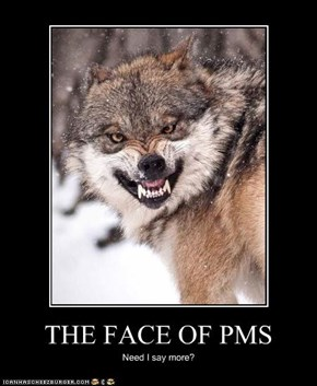 THE FACE OF PMS