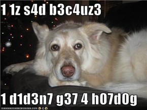 1 1z s4d b3c4uz3  1 d1d3n7 g37 4 h07d0g