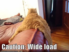 Caution: Wide load