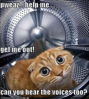pweaz... help me.... get me out! can you hear the voices too?