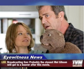 Eyewitness News - Broadcasting live: Probably the closest Mel Gibson will get to a beaver after this movie.