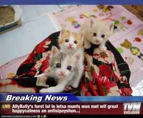 Breaking News - AllyBally's furst lol in lotsa munfs wus met wif great happycatness an antisipayshun...