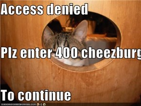 Access denied Plz enter 400 cheezburgers To continue