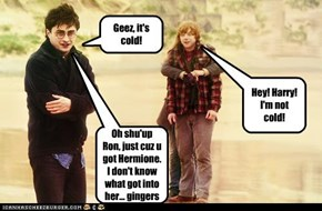 Hey! Harry! I'm not cold!