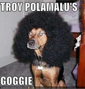 TROY POLAMALU'S  GOGGIE