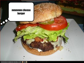 mmmmm cheese burger