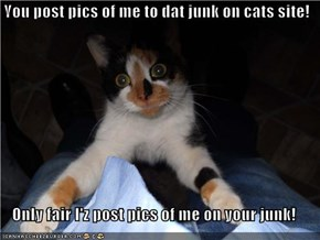 You post pics of me to dat junk on cats site!  Only fair I'z post pics of me on your junk!