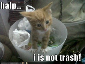 halp...  i is not trash!