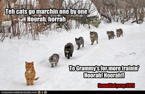 Teh cats go marchin one by one Hoorah, horrah