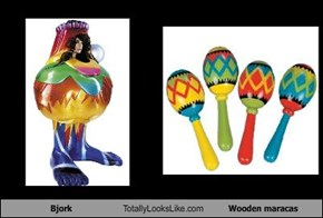 Bjork Totally Looks Like Wooden maracas