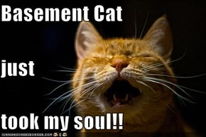Basement Cat just took my soul!!