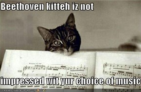 Beethoven kitteh iz not  impressed wit yur choice of music