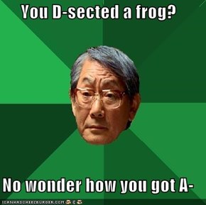You D-sected a frog?  No wonder how you got A-