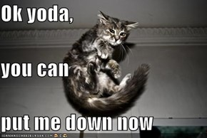 Ok yoda,  you can put me down now