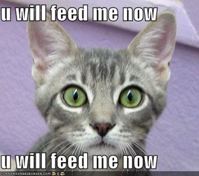 u will feed me now  u will feed me now