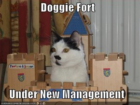 Doggie Fort  Under New Management