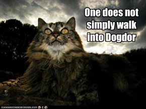 One does not simply walk into Dogdor