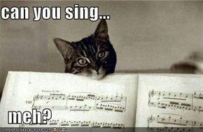 can you sing...    meh?