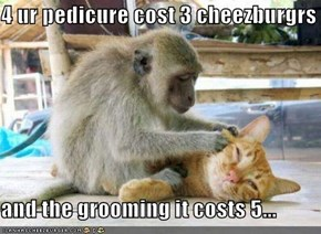 4 ur pedicure cost 3 cheezburgrs  and the grooming it costs 5...