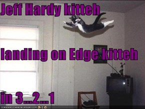 Jeff Hardy kitteh landing on Edge kitteh in 3...2...1