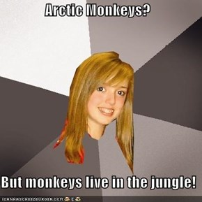 Arctic Monkeys?  But monkeys live in the jungle!