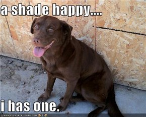 a shade happy....  i has one.