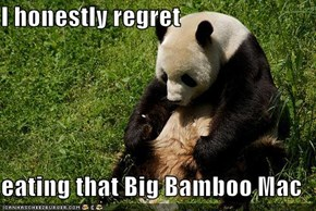 I honestly regret  eating that Big Bamboo Mac