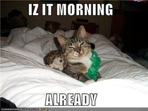 IZ IT MORNING  ALREADY