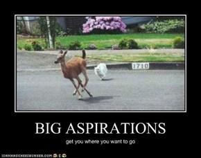 BIG ASPIRATIONS