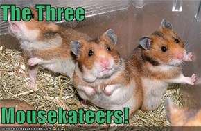 The Three  Mousekateers!