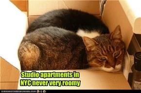 Studio apartments in NYC never very roomy