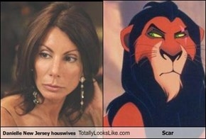 Danielle New Jersey houswives Totally Looks Like Scar