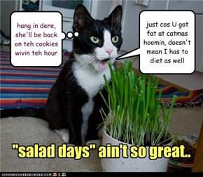 """salad days"" ain't so great.."