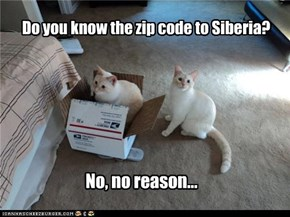 Do you know the zip code to Siberia?