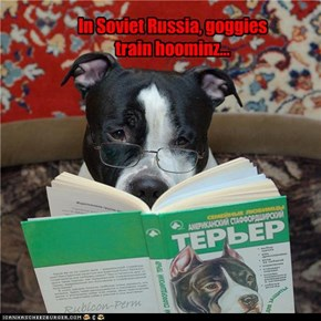 In Soviet Russia, goggies train hoominz...