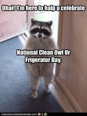 Ohai!  I'm here to halp u celebrate       National Clean Owt Ur  Frigerator Day.