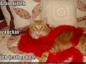 Glam kitteh iz rockin' teh feather boa!