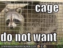 cage  do not want