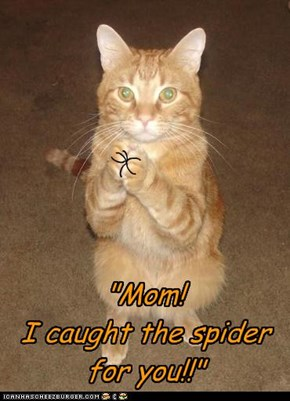 """Mom! I caught the spider for you!!"""