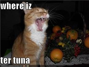 where iz  ter tuna