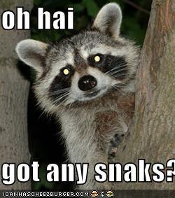 oh hai  got any snaks???