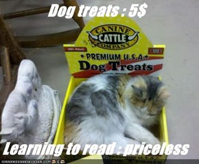 Dog treats : 5$    Learning to read : priceless