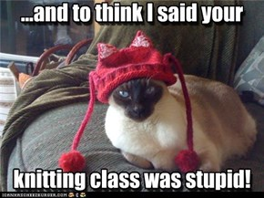 ...and to think I said your      knitting class was stupid!