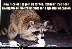 How nice of u to join us for tea, my dear.  I've been saving these moldy biscuits for a speshul occasion.