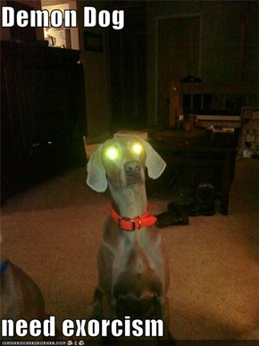 Demon Dog  need exorcism