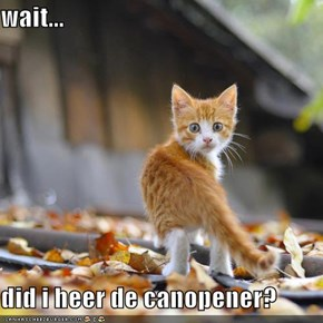wait...  did i heer de canopener?