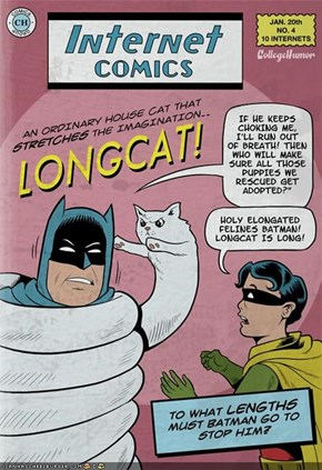 Batman vs. Teh Internet: Longcat Attaks!