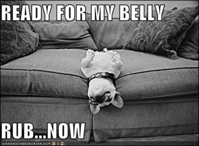 READY FOR MY BELLY   RUB...NOW